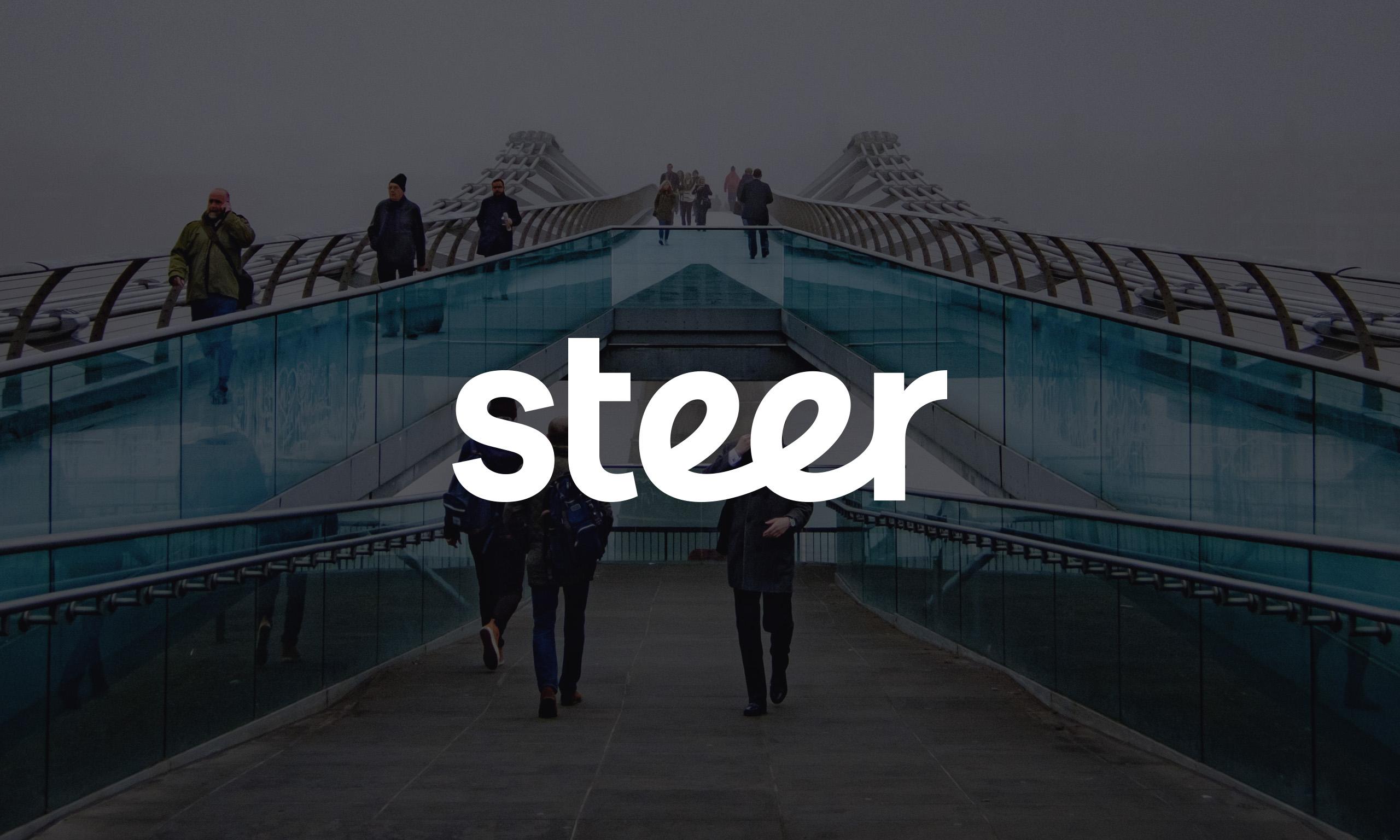 Steer_01